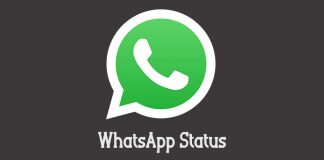 whatsapp-status